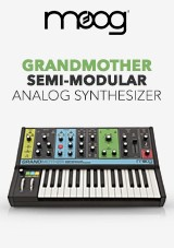 Moog Grandmother Semi-Modulaire Analoge Synthesizer